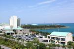 沖縄ヤクルト株式会社 本社